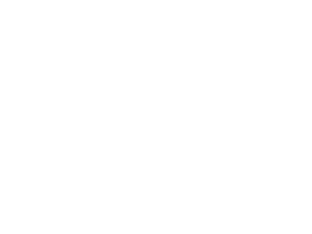 Cranes, Handlers, Lifts
