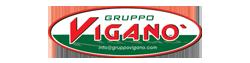 Dealer: Gruppo Viganò Snc